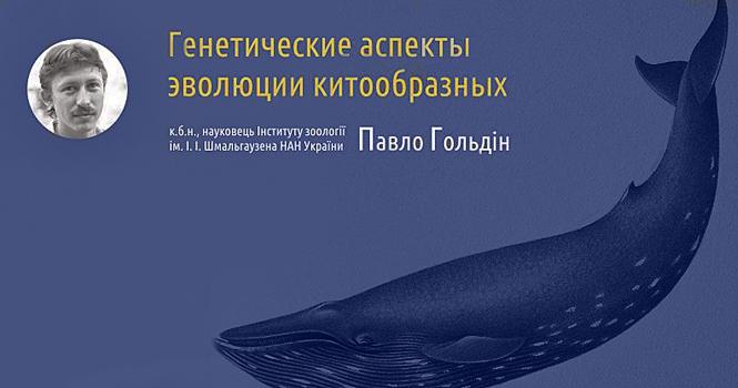 Эволюция, биоинформатика и киты