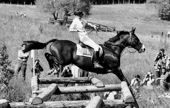 Коні не винні, або Пригоди принцеси Анни в Пирогово